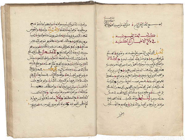 The Richly Decorated Robes of Ibn Sammak